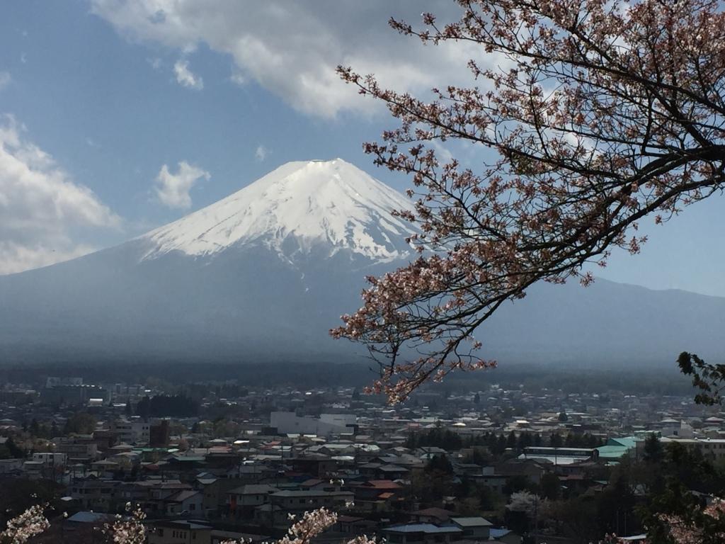 Mount Fuji Madamedaniel honeymoon in Japan blogger